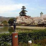福島県伊達郡国見町の周辺で合鍵作成・合鍵お取り寄せをする場合には俺の合鍵が人気!!合鍵ネット注文送料無料俺の合鍵テレビでおなじみ。
