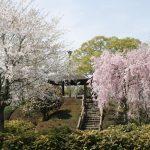 栃木県河内郡上三川町で合鍵作成・ディンプルキーを作る場合にはメーカーロゴ刻印の新カギをご持参ください。俺の合鍵