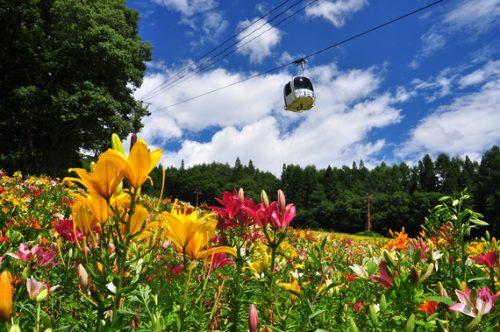 長野県北安曇郡白馬村で、合鍵作りたい・ディンプルキー作成したい・純正キー作りたい場合には、【俺の合鍵】でも合鍵ネット注文できます。