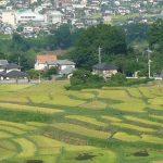 埼玉県秩父郡横瀬町で、合鍵作りたい・合鍵作成した・合鍵なくした場合には、ネット注文できる【俺の合鍵へ】テレビでおなじみ
