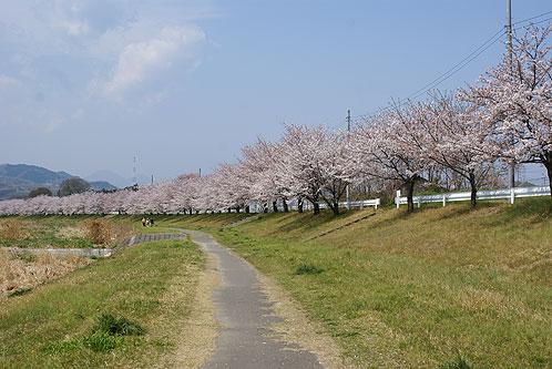 埼玉県本庄市で合鍵作りたい・合鍵無くした・合鍵作成したい場合には、インターネット注文の俺の合鍵へ。