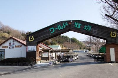大阪府南河内郡河南町で、合鍵作成する場合には【俺の合鍵】検索して見てください。カギ番号入力でネット注文自宅へ届く。