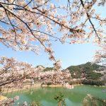 大阪府泉南郡熊取町で、合鍵作成する場合には【俺の合鍵】検索して見てください。カギ番号入力でネット注文自宅へ届く。