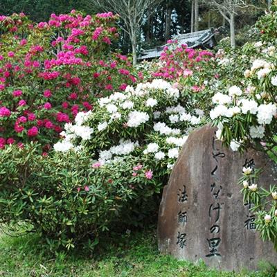 兵庫県佐用郡佐用町、の店舗でディンプルキー作成するよりも、ネット注文【俺の合鍵】自宅へ宅配で人気です。