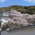 兵庫県たつの市、の店舗でディンプルキー作成するよりも、ネット注文【俺の合鍵】自宅へ宅配で人気です。