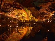 愛知県瀬戸市で合鍵作成・ディンプルキー作りたい・スペアキー作りたい場合にはお近くの店舗を探す前に【俺の合鍵】ネット検索が便利です。なんと自宅に宅配いたします。