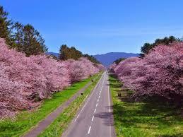 北海道日高郡新ひだか町のどの場所に行けば合鍵できますか?!【俺の合鍵】鍵番号はあなたの家のパスワード