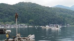 福井県三方郡美浜町で合鍵を作成するにはどうしたらいいか?!俺の合鍵ならネット注文。
