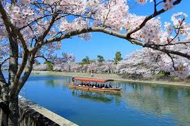 京都府宇治市やその周辺の市区町村で合鍵を作りたい場合にはインタネット注文の俺の合鍵が便利です。