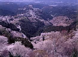 奈良県吉野郡吉野町や、この周辺で合鍵を失くしたり、合鍵を作りたい場合には俺の合鍵ネット注文がお得で便利です。
