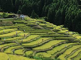 三重県熊野市やその周辺で合鍵作る場合には、ホームセンターや鍵屋さんで作れますが、俺の合鍵インターネット注文も便利です。