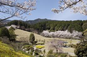 奈良県葛城市や、この周辺で合鍵を失くしたり、合鍵を作りたい場合には俺の合鍵ネット注文がお得で便利です。