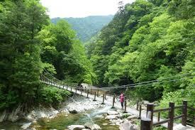 広島県山県郡安芸太田町で家の合鍵、miwaの合鍵つくる場合には俺の合鍵ネット注文が便利です。
